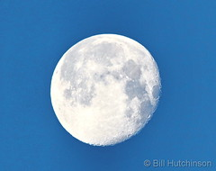 February 21, 2019 - A waning full moon. (Bill Hutchinson)