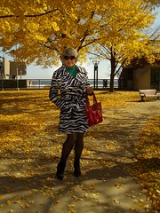A Blatant Admission From Moi (Laurette Victoria) Tags: autumn fallcolors stripedjacket laurette woman sunglasses purse tights