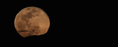 Super Moon 2 19 19 #02 (Az Skies Photography) Tags: super moon supermoon snow snowmoon supersnowmoon night february 19 2019 february192019 21919 2192019 canon eos 80d canoneos80d eos80d canon80d rio rico arizona az riorico rioricoaz sky skyscape skyline arizonasky arizonaskyscape arizonaskyline panorama