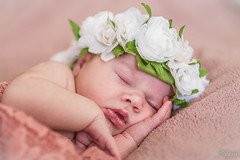 Newborn photo shoot (heidasveins) Tags: newborn newbornphotography precious flowers peaceful babygirl