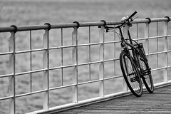 Want to ride my Bicycle (Leipzig_trifft_Wien) Tags: heringsdorf mecklenburgvorpommern deutschland de bicycle cycle lines line leadinglines laeding guiding minimalism black white bnw bw monochrome