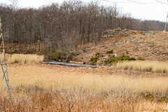 7K8A2513 (rpealit) Tags: scenery wildlife nature weldon brook management area
