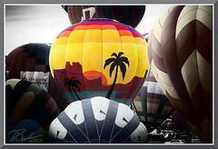 AIBF_5328 (bjarne.winkler) Tags: photo foto safari 20181 day 7 second morning aibf albuquerque international balloon fiesta mass ascension time get arizona balloons air