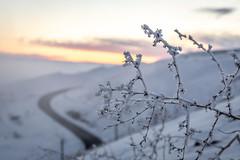 IMG_3896-2 (Brad Stinson) Tags: bradstinson lewiston lc lcvalley idaho id oldspiralhighway spiral hyw winter snow valley view historical clarkston washington wa cold ice