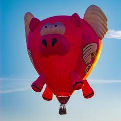 Hamlet-33 (subrec) Tags: lakeland florida hot air balloons sunnfun sun n fun international flyin expo colorfulskies colorfulsky colorful color tampabay tampabayarea tampa orlando airshow pentaxk50 pentax pentaxart bluesky hamlet when pigs fly