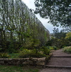 DSC03961-Panorama (patricklardeau) Tags: 40mm a7rii arboretum assemblages chatenaymalabry voigtlander