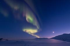 April nights (B_Olsen) Tags: april auroraborealis northernlights arctic nightscape nikond810a moon nightsky troms norway