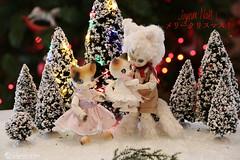 2018catnoel (Nathy1317) Tags: ruppe doll bjd pukisha fairyland cocoriang mocka