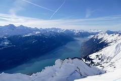Eiger Mönch Jungfrau Brienzersee Bernese Oberland Switzerland (roli_b) Tags: brienzer rothorn brienz brienzersee see berner oberland bernese eiger mönch moench jungfrau swiss mountains alps alpine snow topped berge montañas landscape landschaft switzerland schweiz suisse suiza svizzera tourism viajar