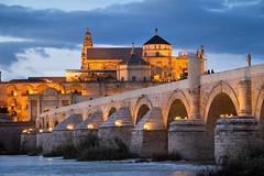 Puente Romano (~Arles) Tags: cordoba spain bridge building mosque cathedral mezquita water river dusk sunset light shadows sky clouds bluehour grass plants brick puenteromano guadalquivir