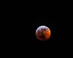 Blood Moon (CanonDLee) Tags: astrometrydotnet:id=nova3161881 astrometrydotnet:status=solved