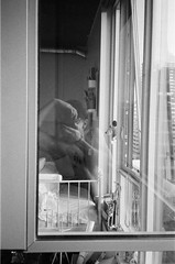 """Self portrait"".     #kodak #35mm #pointandshoot #blackandwhite #olympusXA #olympus #olympusxa #streetphotography (bnroman94) Tags: kodak 35mm pointandshoot blackandwhite olympusxa olympus streetphotography"