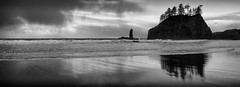 Beach mirror (D. Inscho) Tags: lapush pacificnorthwest washington washingtoncoast seastack reflection