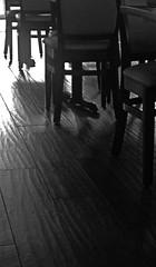 afternoon cafe (Light Orchard) Tags: ©2019lightorchard bruceschneider cafe