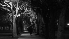 Nocturnal Tree Tunnel (byronv2) Tags: blackandwhite blackwhite bw monochrome edinburgh edimbourg scotland edinburghbynight night nuit nacht meadows park trees path street candid peoplewatching tunnel noir