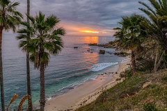 I can't get enough of this place! (tquist24) Tags: california hdr heislerpark lagunabeach nikon nikond5300 pacificocean beach clouds evening geotagged ocean palmtree palmtrees park reflection reflections rock rocks sand seascape sky sunset tree trees water