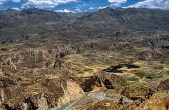 Peru, Colca canyon : Landscape #5 (foto_morgana) Tags: analogphotography analogefotografie aurorahdr2019 colcacanyon landscape lightroom mountainous nikoncoolscan outdoor panoramic peru photographieanalogue scenic southamerica terracedfields travelexperience vuescan