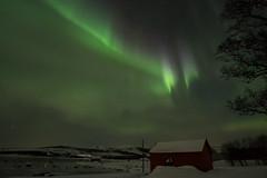 aurore norvégienne (jarguel) Tags: aurore aurora northernlights norway norvège night nuit hiver winter neige snow ciel sky fuji fujixt1 samyang samyang12mm