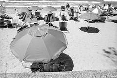 summer slumber, Manly beach, Sydney 2018  #857 (lynnb's snaps) Tags: afnikkor24mmf28d f80 ilfordhp5 manly nikon xtol bw beach film street 2018 slr umbrella umbrellas kodakxtoldeveloper sunbaking sunbathers sleeping nap siesta shadows summer manlybeach sydney australia coast sand hot blackandwhite bianconegro biancoenero blackwhite bianconero blancoynegro noiretblanc schwarzweis monochrome ishootfilm filmneverdie humour