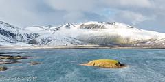 Icelandic Highlands (2) (SewerDoc (4 million views)) Tags: iceland landmannalaugar snow mountains highlands island lake windy landscape