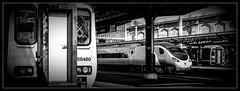 The regulars (Blaydon52C) Tags: dmu newcastle carlisle hexham northern rail railways multiple unit british train trains class156 class 158 pendolino class390 virgin emu monochrome bw