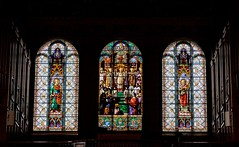 Stained Glass Windows (Karen_Chappell) Tags: newfoundland nfld church interior architecture window basilica cathedral city urban religion stainedglass glass windows canada atlanticcanada avalonpeninsula downtown multicoloured light catholic art canonef24105mmf4lisusm