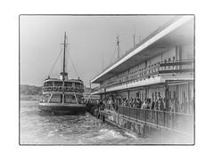 Ship arrived, Istanbul, Turkey (WS Foto) Tags: istanbul turkey türkei europe asia bw blackandwhite schwarzweis ship arrived people menschen ankunft schiff linienschiff bosporus haltestelle