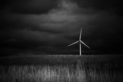 Spinning in the Wind (cmctaggs) Tags: christopher mctaggart mctagg art instagram flickr carleton college arboretum stormy moody dark landscape minnesota christophermctaggart christophermctagg photographer nikon student