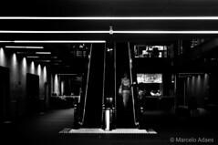 Ascendio!  #decoracao #arquitetura   #quadro #nikon #autoral #fotografia #nikkor #photo #photography #design #architecture #decor #lensculture #myfeatureshot #bw #bnw #blacknwhite #blackwhite #blackandwhite #pb #street #streetphotograpy #sampa #saopaulo # (Marcelo Adaes) Tags: blacknwhite saopaulo decoracao nikon nikkor myfeatureshot sampa blackandwhite decor bw street design sp architecture blackwhite photo bnw lensculture fotografia pb autoral arquitetura quadro streetphotograpy photography