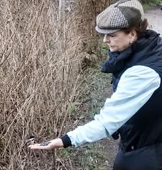 Cath feeding Chickadee (glenbodie) Tags: bodie catherinehurley glen glenbodie north40 reifel