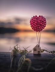 Home sweet home (Melanie Martinu) Tags: 35mm sigmaart sigma canon germany bavaria clouds little ballon red wood bokeh lake colorful colors sky house dof landscape nature sunset