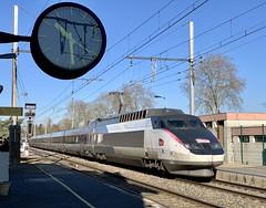TGV Sud Est 60 en UM (SylvainBouard) Tags: tgvsudest railway sncf train