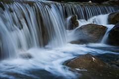 Splish splash (Jim Nix / Nomadic Pursuits) Tags: jimnix nomadicpursuits austin texas bullcreekgreenbelt waterfall creek stream nature landscape hike walk woods forest park luminar skylum sony sonya7ii longexposure