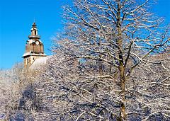 vintola photography (vintola) Tags: kirkkokirkkopuisto leicasl naantali talvi nådendal finland finnland vintola winter vinter snow schnee snö church kirche kyrka tree baum träd