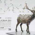 東京都現代美術館企画展の写真