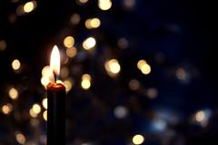 BUON NATALE! (meghimeg) Tags: 2018 genova macromonday bokeh buonnatale auguri wishes merrychristmas holyday