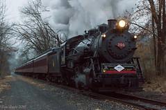 CNJ 113 @ Pottsville, PA (Dan A. Davis) Tags: readingandnorthern rbmn centralrailroadofnewjersey cnj113 cnj project113 minersville pottsville pa pennsylvania train passengertrain railroad locomotive steamlocomotive steamengine 060