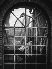 Windows (mabumarion) Tags: curtain stairs reflections bw urban lapadu industrialheritage windows