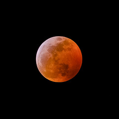 20190120_Super_Blood_Wolf_Moon (petamini_pix) Tags: moon fullmoon eclipse totaleclipse mooneclipse bloodmoon supermoon nightphotography night nightsky wolfmoon