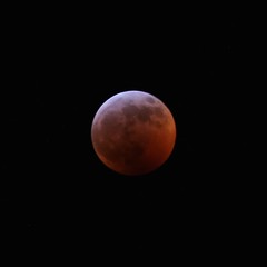 Blood moon eclipse.  12 minutes before totality. (Andy Ziegler) Tags: lunar moon eclipse totaleclipse lunareclipse bloodwolfmoon canon6d tamron70200mm astronomy astrophotography