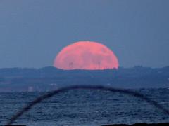 Moonrise from Whiting Bay (davidmcnuh) Tags: scotland arran whitingbay sandbraes beach moon sea ayrshire moonrise