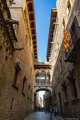 Barcelone-151 (bonacherajf) Tags: barcelona barcelone catalogne catalunya espagne spagna architecture quartiergothique espania