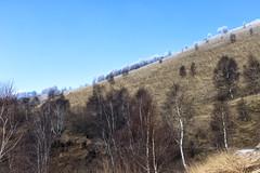 Bollettone - 06 (bumbazzo) Tags: monte bolettone boletto como italia italy montagna mountain montagne mountains landscape landscapes panorama panorami paesaggio paesaggi