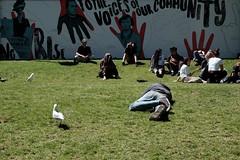 ✋ (jhnmccrmck) Tags: february summer xt1 people lawn grass classicclassic fujifilm victoria melbourne
