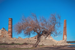 Ghost (u c c r o w) Tags: ayvalik türkiye türkei turkey blue sky outdoor tree ghost factory chimneys chimney construction abandoned uccrow landscape wall