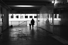 Walking the dog (pascalcolin1) Tags: paris13 femme woman chien dog lumière light reflets reflection miroir mirror photoderue streetview urbanarte noiretblanc blackandwhite photopascalcolin 50mm canon canon50mm