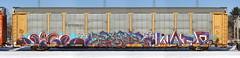 Jigl/Paser/Wasp (quiet-silence) Tags: graffiti graff freight fr8 train railroad railcar art jigl paser wasp mfk ld autorack ferromex ttgx922134