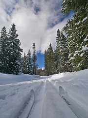 mp1130817skiTipsWeatherForming (thom52) Tags: thom bend central oregon xc skiing snow sno park meissner