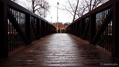 The bridge: woods side (@manylaughs) Tags: manylaughs bridge wet rain barcroftpark arlingtonva va arlington