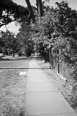 Yay, a footpath (Matthew Paul Argall) Tags: hanimex35es fixedfocus focusfree 35mmfilm kentmerepan100 100isofilm blackandwhite blackandwhitefilm footpath montrose
